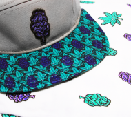 hat to match jordan 5 grape