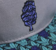 hat to match jordan 5 grape
