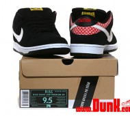 nike-sb-dunk-low-premium-firecracker-05