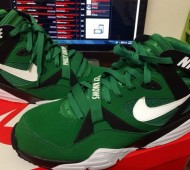 nike-air-trainer-max-91-eagles-1