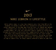 nike-lebron-11-nsw-lifestyle-official-images-01