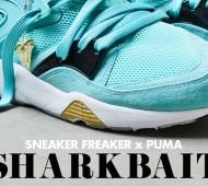 sharkbait-sneaker-freaker-2