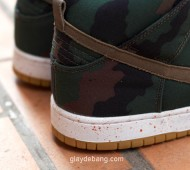 510-skateboarding-nike-sb-dunk-high-5