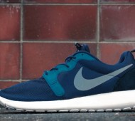 nike-roshe-run-hyp-april-2014-08