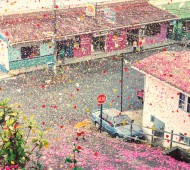 check-out-nick-meeks-photographs-of-costa-rica-covered-in-flowers-for-sony-6