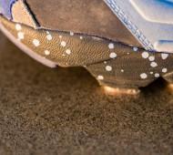 packer-shoes-stash-reebok-insta-pump-fury-05