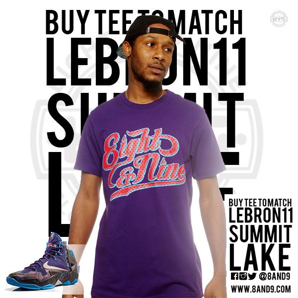 lebron 11 hornets shirt