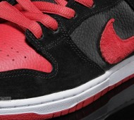 nike-sb-dunk-j-pack-available-10