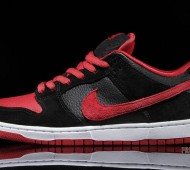 nike-sb-dunk-j-pack-available-13