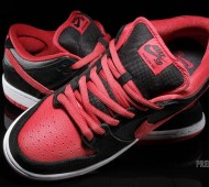 nike-sb-dunk-j-pack-available-8
