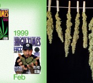 high-times-40th-anniversary-book-07