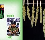 high-times-40th-anniversary-book-07